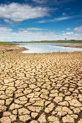 Drought: only one of the many effects of global warming